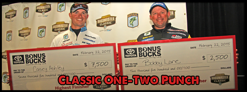 Ashley and Lane  Pack One-Two Bonus Bucks Classic Punch