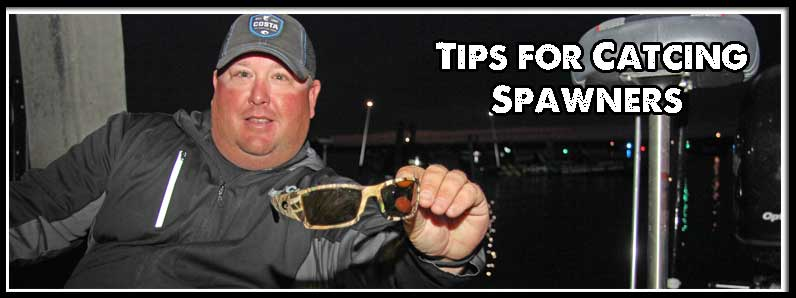 Move Slow and Stay Focused, Among Powroznik's  Tips for Catching Spawning Bass