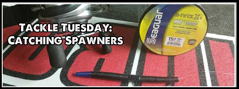 Tackle Tuesday: Catching Spawners