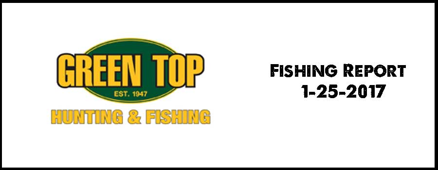 Green Top Fishing Report 1-25-2017