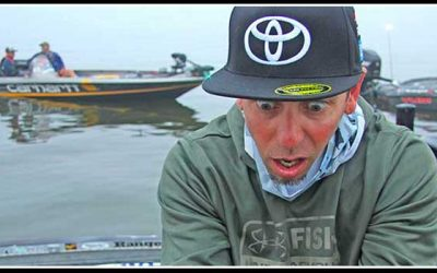 Iaconelli: I Need this Day