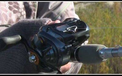 Brent Ehrler Discusses the New Tatula SV Reel by Daiwa