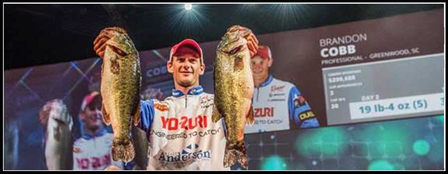 South Carolina's Cobb Grabs Lead at Professional Bass Fishing's Forrest Wood Cup
