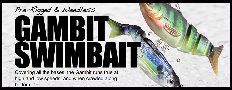 "Matt Arey – Lunkerhunt ""NEW Swimbait"""