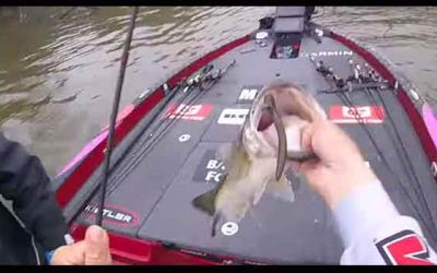 FIRST CAST GIANT! Lake Fork 2020 Knockout Round… AJFishing