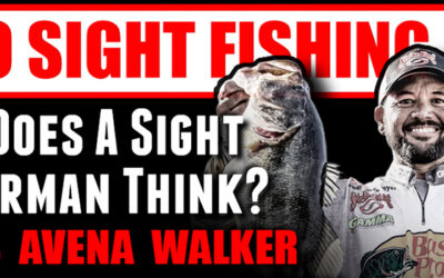MLF Pros Teach Sight Fishing 101 – Part 1: How Does A Sight Fisherman Think?