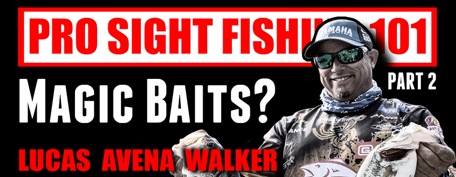 MLF Pros Teach Sight Fishing 101 – Part 2: MAGIC BAITS
