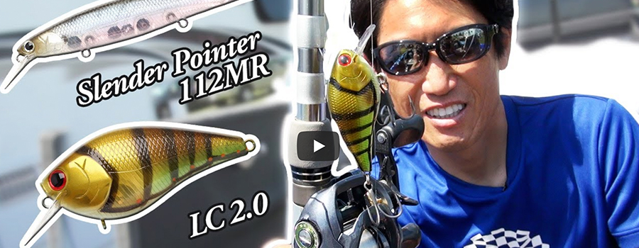 Early Summer Pattern /  Takahiro Omori for Smallmouth