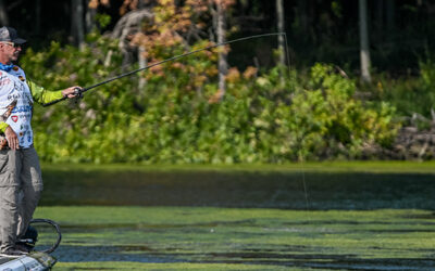 Morgan Rolls in Knockout Round, Wheeler Clinches AOY at MLF Bass Pro Tour Stage Seven at Lake St. Clair